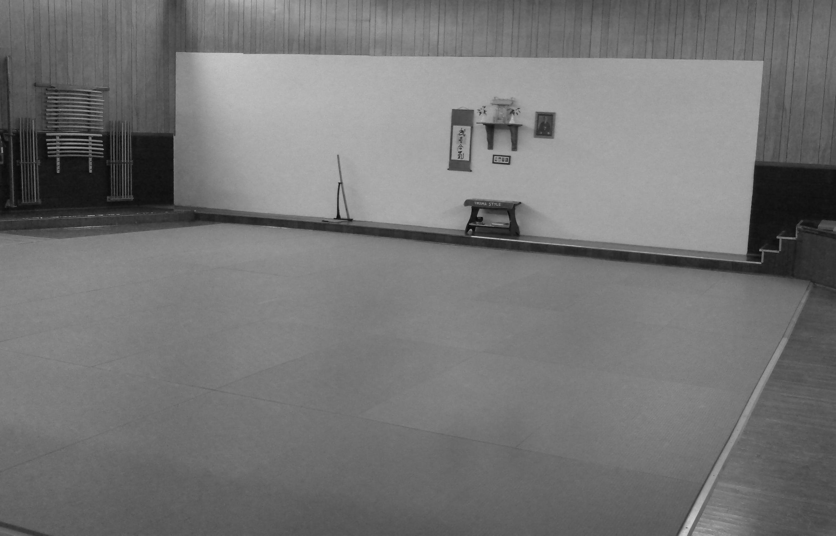 Dojo Floor Mats - Carpet Vidalondon